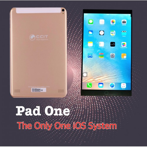 "CCIT Pad One, 3GB RAM, 32GB Storage, Dual Sim,10.1"", Gold"